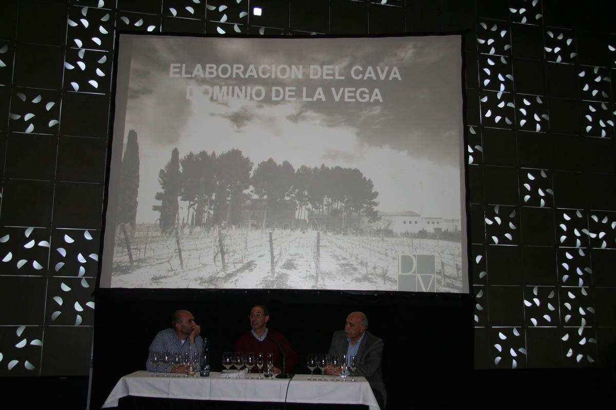Cata Bodega Dominio de la Vega