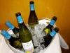 Cata de vinos y cavas de AT Roca